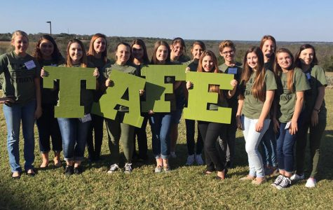 TAFE heads to state