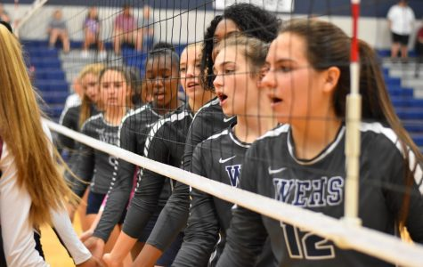 Volleyball is playoff-bound once again