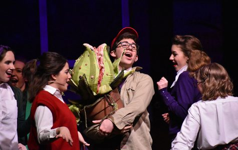 Sudden success // Singing Ya Never Know during a dress rehearsal of Little Shop of Horrors, Seymour Krelboyne, played by freshman Elbert Haney, is surrounded by Doo-Wop girls senior Macy Herrera, junior Cecil Pulley and sophomore Iris Kurz as they sing about his recent success stemming from the plant, Audrey II. Haney received a nomination for Best Leading Actor alongside other nominations with castmates and crew.