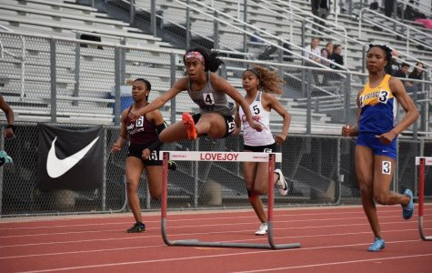 Runners compete in Area track meet