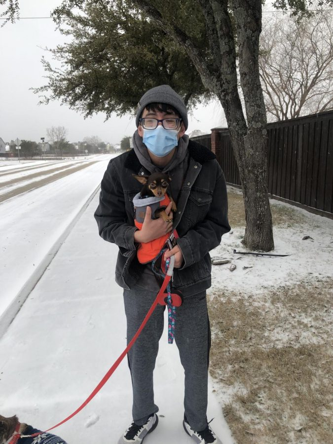 """Chilly dogs \\ Freshman Axel Guerra takes his dogs on a walk during the snowstorm Feb. 18. """"I have literally done no school or book-related work at this point, the snow just helped add on to that,"""" freshman Axel Guerra said."""