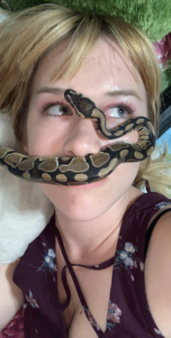 """Senior Jessica Sadberry """"He is a Ball Python. I love reptiles and have never had one before this so I thought it'd be a fun challenge. His name is Blue and I named him that because in Jurassic Park there's a pterodactyl named Blue and I thought it fit considering his eyes are blue. I've had him for 3 years. He likes to cuddle with my cat and I."""""""